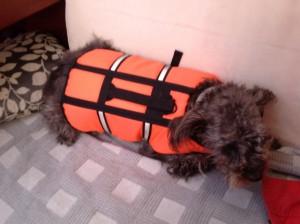 Nico mit Schwimmweste