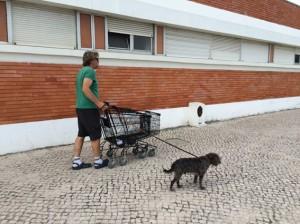 Die einsamen Einkaufswagenzurückschieber