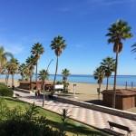 Palmen am langen Strand von Estepona