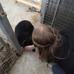 Larissa würde auch gerne wieder einen Hund haben…