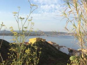 Der Blick über die Maddalena-Bucht
