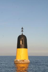 Die Gefahrentonne in der Bucht von St. Tropen mit Kormoran