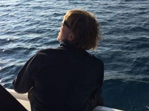 Der Skipper schaut mit kritischem Blick in die Segel