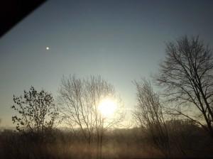 Eine kalte Wintersonne hinter kahlen Bäumen…