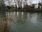 Idyllischer Flusslauf
