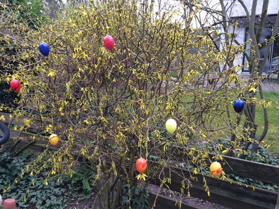 Die bunten Eier bringen Farbe in den grauen Garten