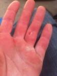 Kein Job für schwache Hände