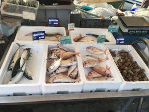 Direkt vom Fischer