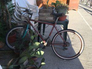verrostetes Fahrrad am Kakteentisch: Zeugnis einer charmanten Stadt