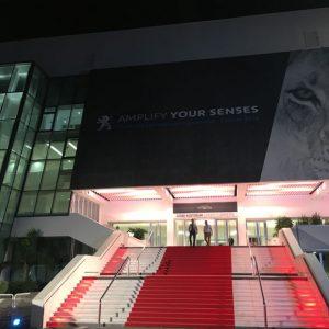Der rote Teppich in Cannes