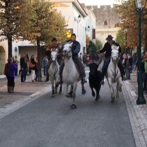 Die Reiter haben den Stier in der Mitte