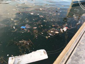 Schmutz im Hafenbecken