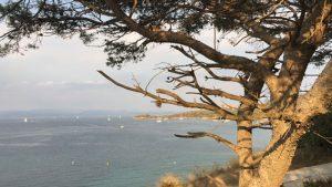 Blick über die Bucht von Hyères