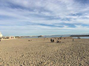 Strandleben im November